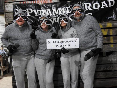Raccoonawarras